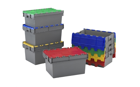 Attached Lid Containers with Coloured Lids